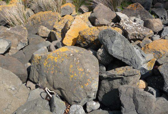 12.rocks