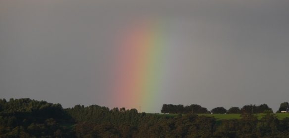 22.rainbow