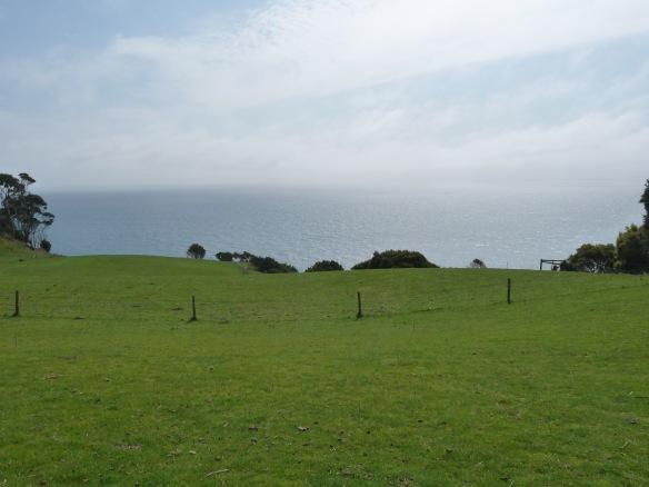 4.pasture