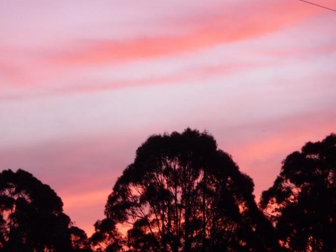 10.sunset8