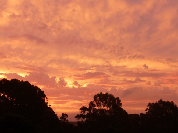 11.sunset10