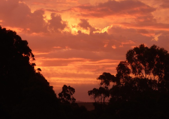 12.sunset11