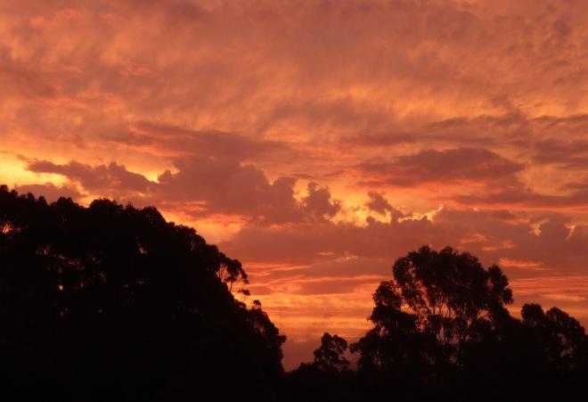 13.sunset12