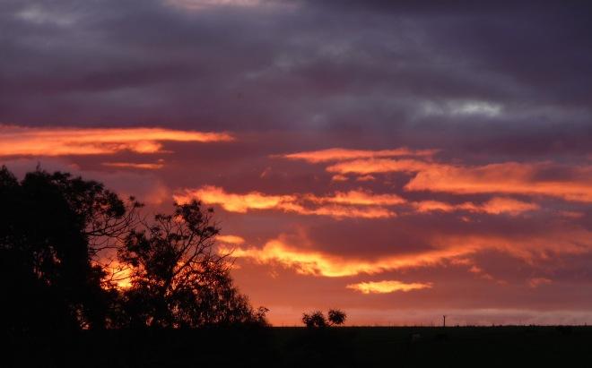 14.sunset14