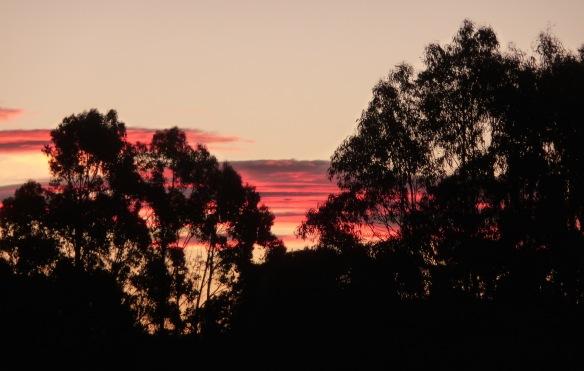 15.sunset16