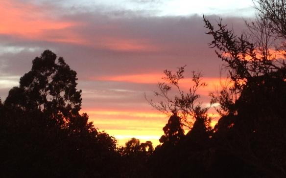 17.sunrise 3.6.13 001