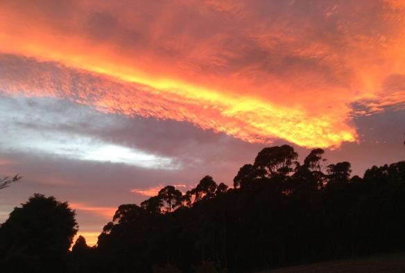 19.sunrise 3.6.13 004