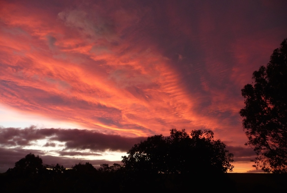 7.sunset4