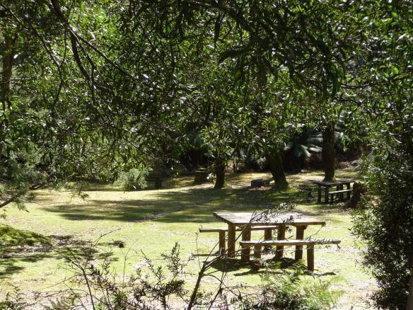 17.picnic area