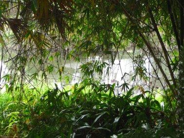 23.lake path1