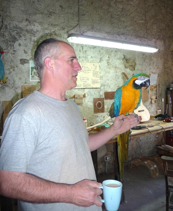 35.exotic bird