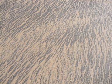 10.sand1