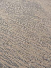 11.sand2