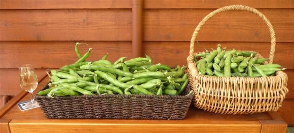 37.veggies7