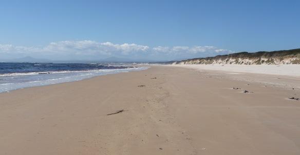5.beach2