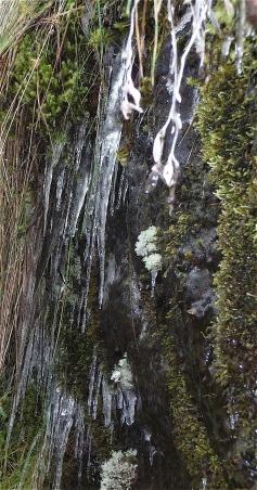 51.Waterfalls walk3