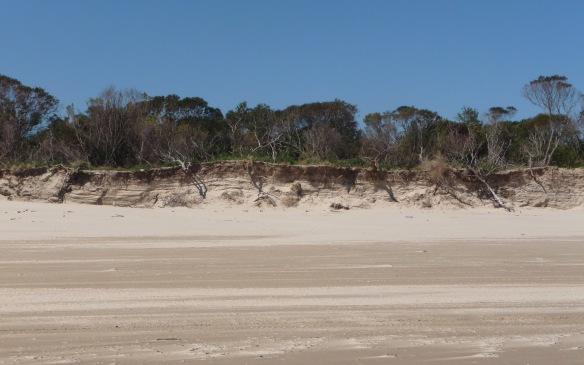 6.beach5