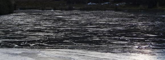 8.frozen lake1