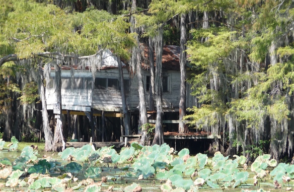 13.Caddo Lake