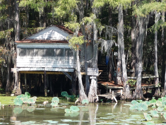 14.Caddo Lake