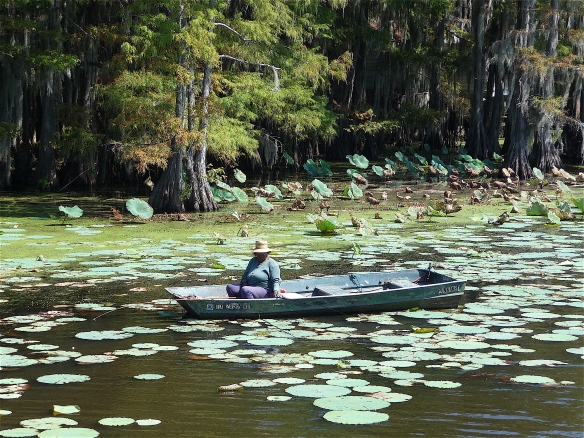 15.Caddo Lake
