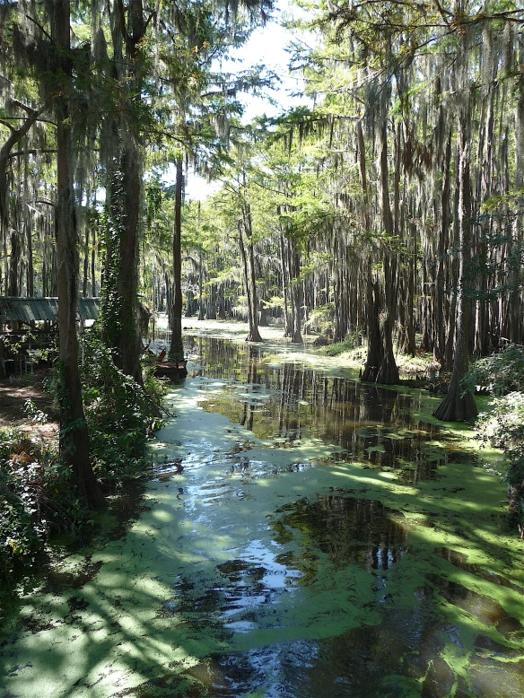 2.Caddo Lake