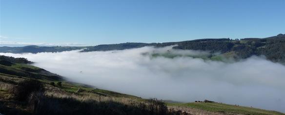 3.fog1