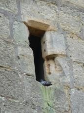 38.Bodiam Castle
