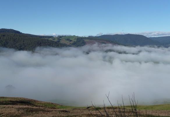 4.fog2