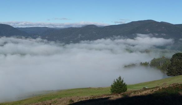 5.fog3