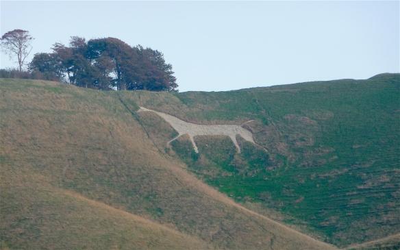 17.Chalk Horse