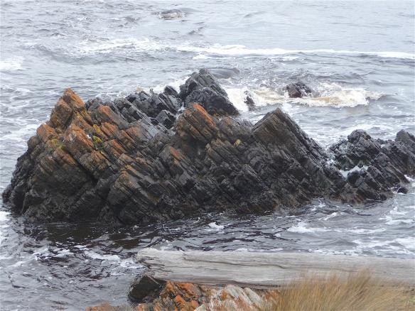 10.shoreline2