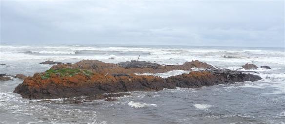 11.shoreline3