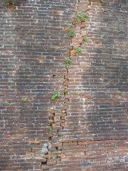 23.wall3