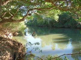 8.river