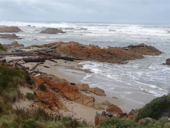 9.shoreline1