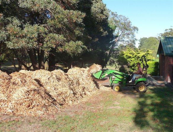 1.mulch pile1