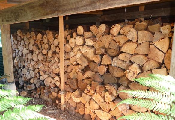 23.woodshed1