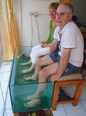 Fish Spa, Sanur, Bali, November 2012