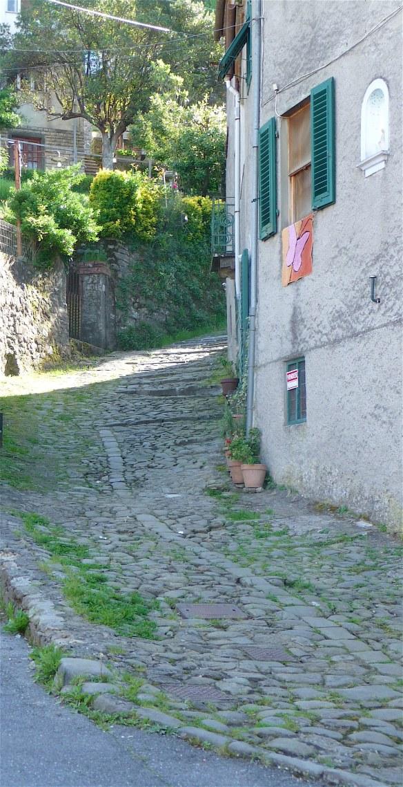 12.walkway steps