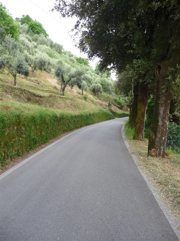 2.road