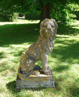 11a.lion