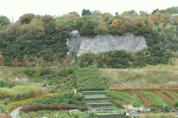 13.outdoor gardens