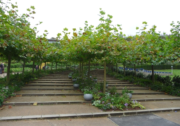 14.outdoor gardens