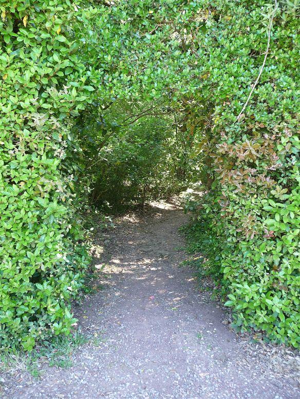 8.path