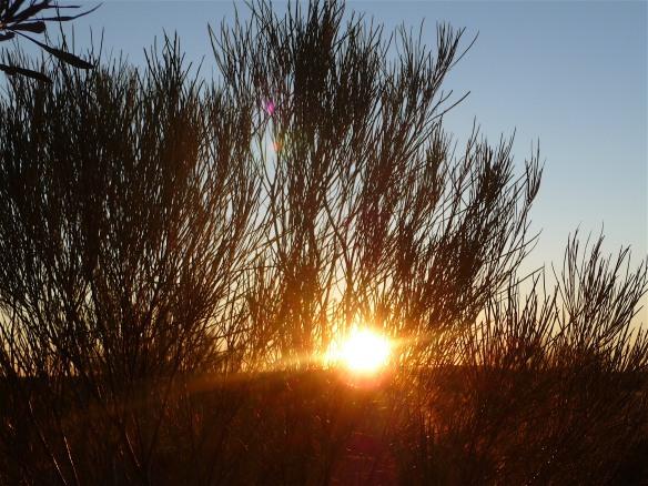 2.setting sun