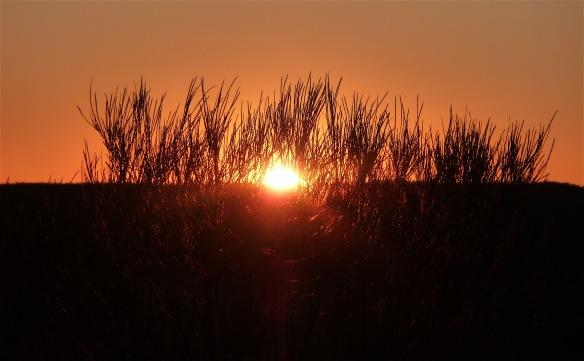 6.setting sun