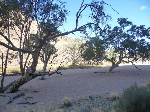 10.Roe Creek