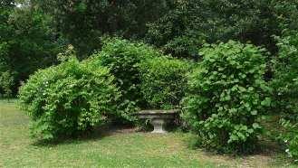 38-giardino-spagnolo