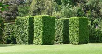 39-giardino-spagnolo